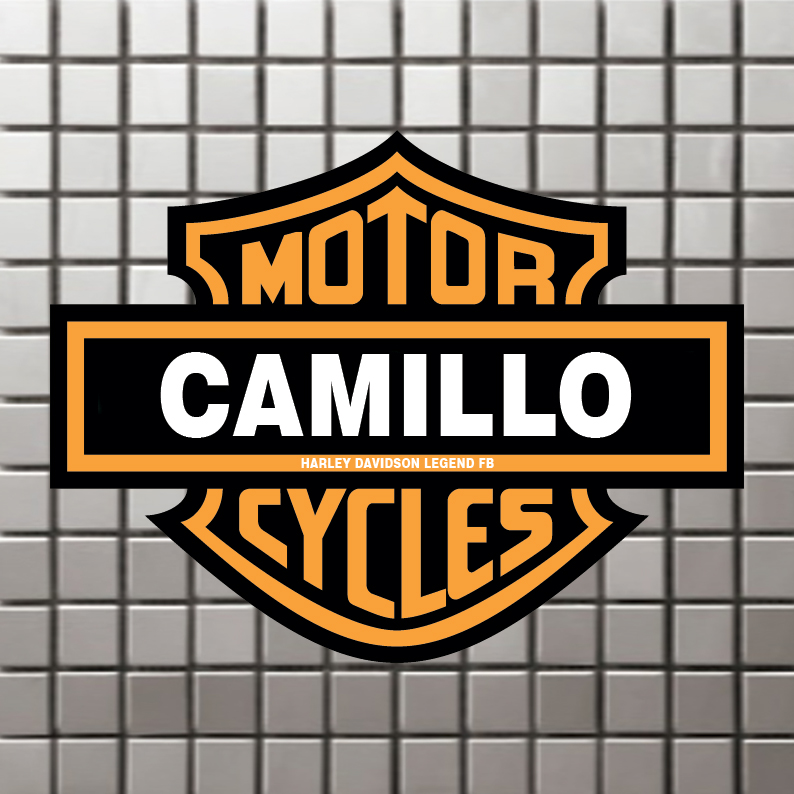 Camillo harleysti com for Camillo homes