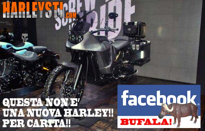 Nuova Harley Davidson 750 Stealth? Ecco come stanno le cose