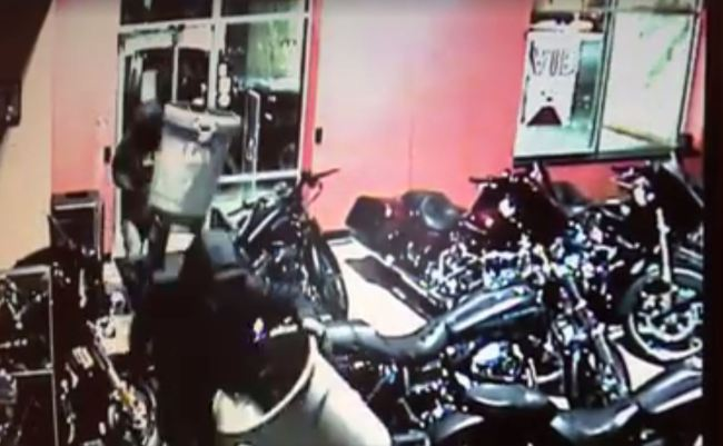 Furto,  11 Harley-Davidson rubate alla Bike in Black di Valdengo in provincia di Biella