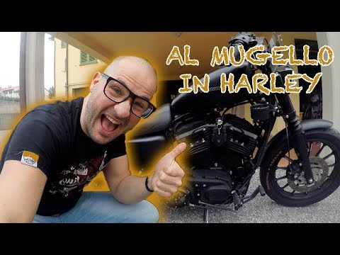 HARLEY DAVIDSON 883 TOP SPEED 190KM/H – Harley Davidson Sportster 883 Iron